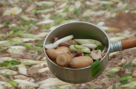 山形の芋煮